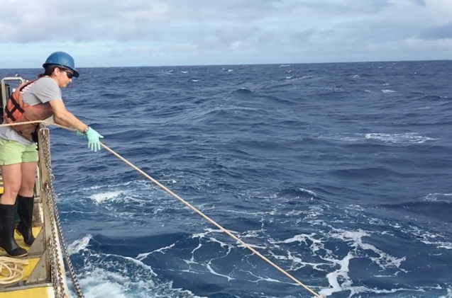 Sheean Haley wrangles a net off the back of a research vessel.